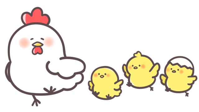にわとりと3羽のひよこ